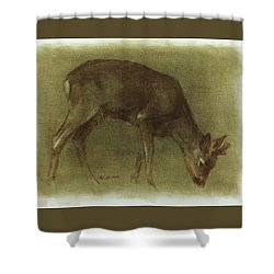 Grazing Roe Deer Oil Painting Shower Curtain