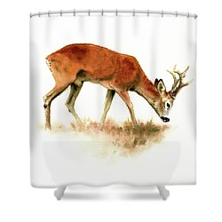 Grazing Roebuck Watercolor Shower Curtain