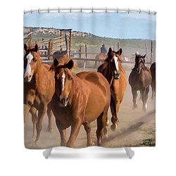 Great American Horse Drive - Coming Into The Corrals Shower Curtain