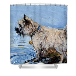Shower Curtain featuring the painting Great Bay by Molly Poole