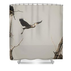 Shower Curtain featuring the photograph Great Blue Heron - 6 by David Bearden