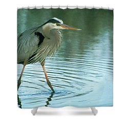 Great Blue Heron 7 Shower Curtain
