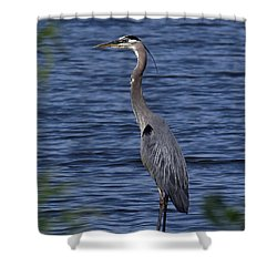 Great Blue Heron Dmsb0001 Shower Curtain