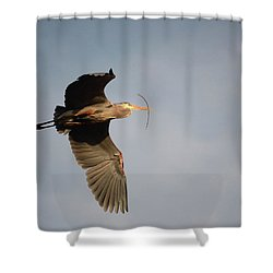 Shower Curtain featuring the photograph Great Blue Heron In Flight by Ann Bridges