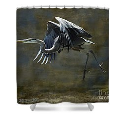 Great Blue Heron Shower Curtain by Kathy Russell