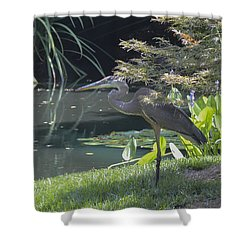 Great Blue Heron Shower Curtain by Linda Geiger