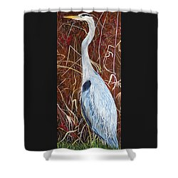 Great Blue Heron Shower Curtain by Marilyn  McNish