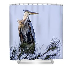 Great Blue Heron On A Windy Day Shower Curtain by Roger Wedegis