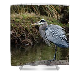 Shower Curtain featuring the photograph Great Blue Heron On The Watch by George Randy Bass