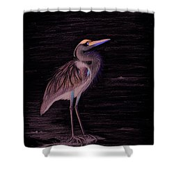 Shower Curtain featuring the drawing Great Blue Heron by Phyllis Howard