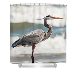 Great Blue Heron Profile Shower Curtain