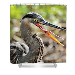 Great Blue Heron Tongue Shower Curtain