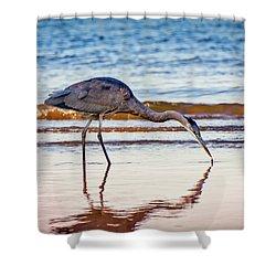 Great Blue Heron Twilight Shower Curtain