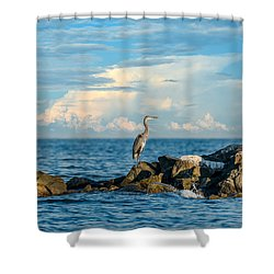 Great Blue Heron World Shower Curtain