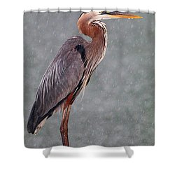 Great Blue In The Rain Shower Curtain