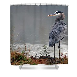 Great Blue Heron Landscape Shower Curtain