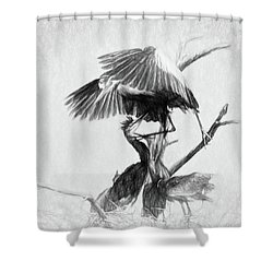 Great Blues II Sketch Shower Curtain