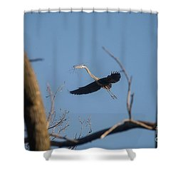 Shower Curtain featuring the photograph Great Blues Nesting by David Bearden