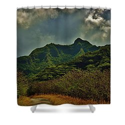 Shower Curtain featuring the photograph Great Day For A Walk by Craig Wood