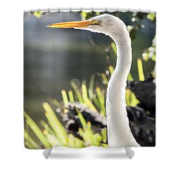 Great Egret Headshot Profile  Shower Curtain