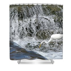 Great Egret Hunting At Waterfall - Digitalart Painting 1 Shower Curtain