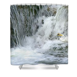Great Egret Hunting At Waterfall - Digitalart Painting 3 Shower Curtain