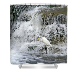 Great Egret Hunting At Waterfall - Digitalart Painting 4 Shower Curtain