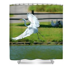 Great Egret In A Left Banking Turn - Digitalart Shower Curtain