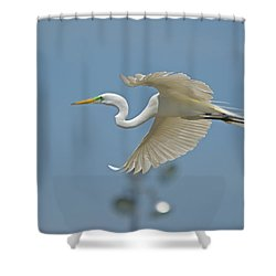 Great Egret In Flight And Flood Lighting Shower Curtain