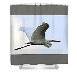 Great Egret Port Jefferson New York Shower Curtain by Bob Savage