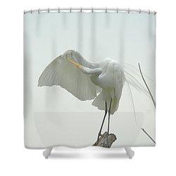 Great Egret Preening On Broken Tree Limb Shower Curtain