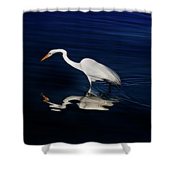 Great Egret-self Reflections Shower Curtain