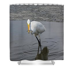 Great Egret Strike Shower Curtain