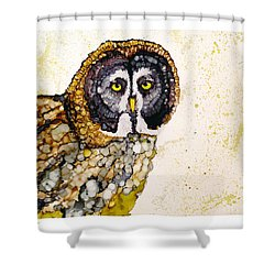 Great Grey Shower Curtain