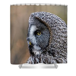 Great Grey's Profile A Closeup Shower Curtain by Torbjorn Swenelius