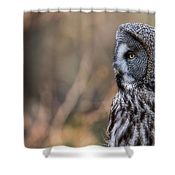 Great Grey's Profile Shower Curtain by Torbjorn Swenelius