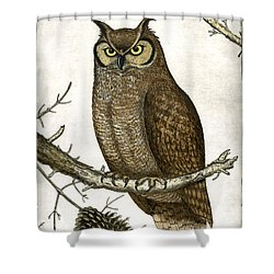 Great Horned Owl Shower Curtain by Charles Harden