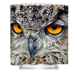 Great Horned Owl Closeup Shower Curtain by Jim Fitzpatrick