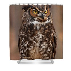 Great Horned Owl Digital Oil Shower Curtain by Chris Flees
