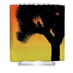 Great Horned Owl In A Joshua Tree Silhouette At Sunset Shower Curtain