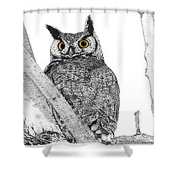 Great Horned Owl In A Tamarisk - Colored Eyes Version Shower Curtain