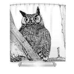 Great Horned Owl In A Tamarisk Shower Curtain