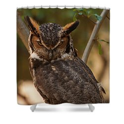 Great Horned Owl In A Tree 2 Shower Curtain by Chris Flees