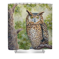 Great Horned Owl Shower Curtain by Joe Bergholm