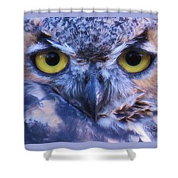 Great Horned Owl Macro Shower Curtain