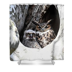 Shower Curtain featuring the photograph Great Horned Owl Nest by Gary Wightman