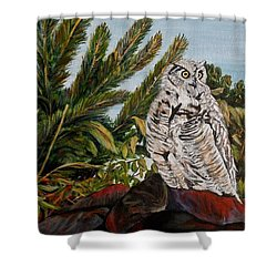 Great Horned Owl - Owl On The Rocks Shower Curtain by Marilyn  McNish