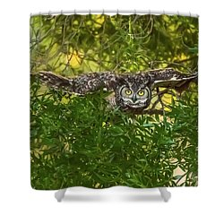 Great Horned Owl Take Off Shower Curtain by Marc Crumpler