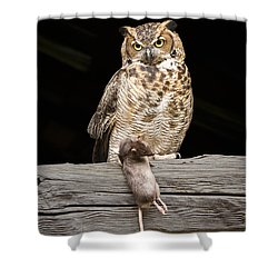 Great Horned Owl With Dinner Shower Curtain