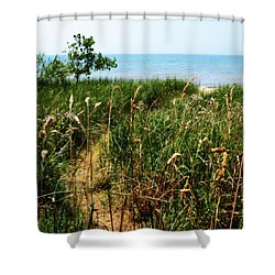 Shower Curtain featuring the photograph Great Lake Beach Path by Michelle Calkins